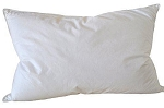 Soft Feather 95%,Down 5%,Tc233 Cotton Cover-Standard 26oz as low as $ 13.46 each