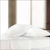 Centium SATIN White Hotel Sheet by Standard Textile Centium Core, Queen Fitted 60x80