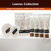 LEAVES Collection, Hotel Carton Shower Cap,
