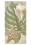 June Erica Vess 'Palm Beach III' Print Art Only,18in x 9in