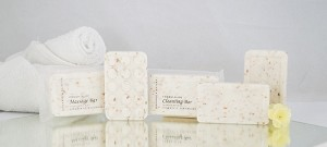 Terra Botanics OATMEAL Facial Soap, Clear Sachet wrapped, 35 gm./1.25 oz. With Organic Honey And Aloe Vera (Case of 300)