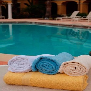Wholesale Hotel/Motel Light Blue Pool Towels, 10's 100% All Cotton, 36x68