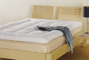 Featherbed 50% Duck Feather/50% Snow White Down, 220 Tc, Twin (low as $199.50) by Down Inc.